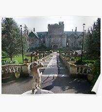 Hatley Castle, North Side Poster