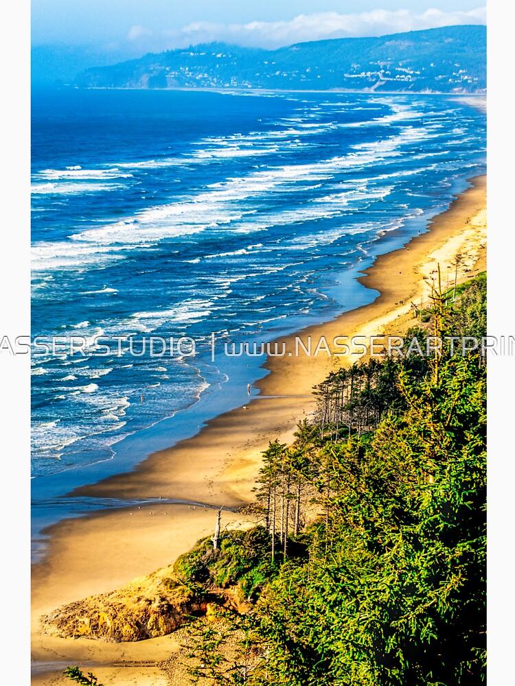 Cape Lookout Oregon 0636 by neptuneimages