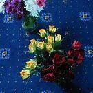 Valentinstag Rosen von VoxCeleste