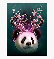 PANDA HORNS UP Photographic Print