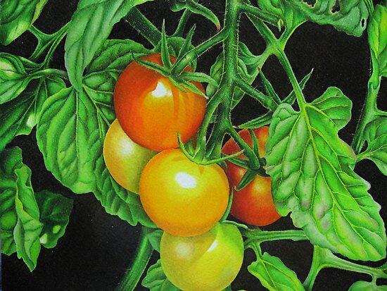 Tomatoes - Garden treat by lanadi