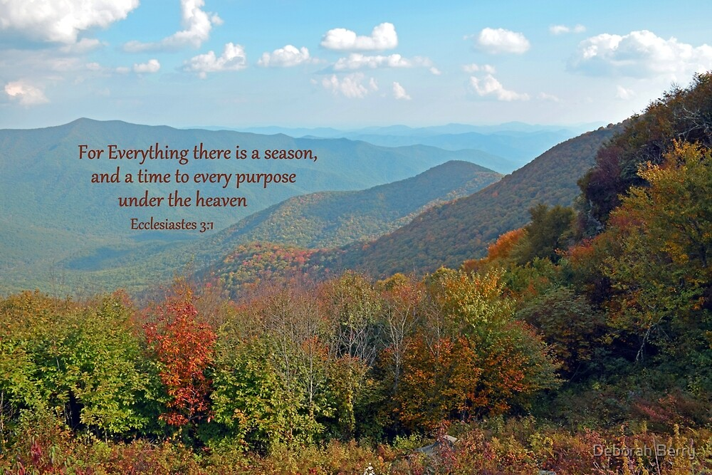 There is a Season by Deborah Berry