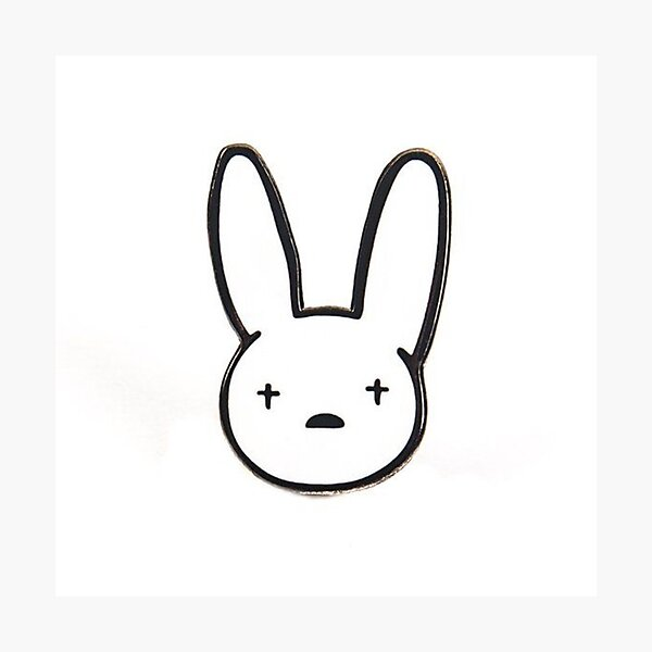"""""""Bad bunny the bad rabbit"""" Photographic Print by ..."""
