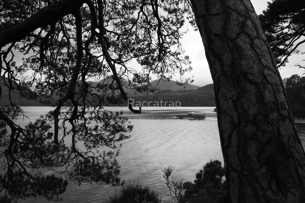 Derwent Black and White by Raccatrap