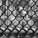 Chain Link Fence by Kelly Chiara