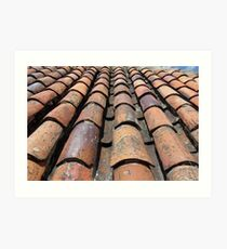 Old Tiled Roof Art Print