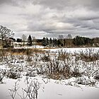 Back Road and Frozen Pond in Winter by Chris Coates