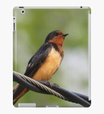 Bird Perched upon Wire iPad Case/Skin