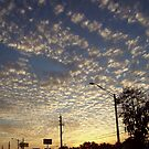 Evening clouds by Vida