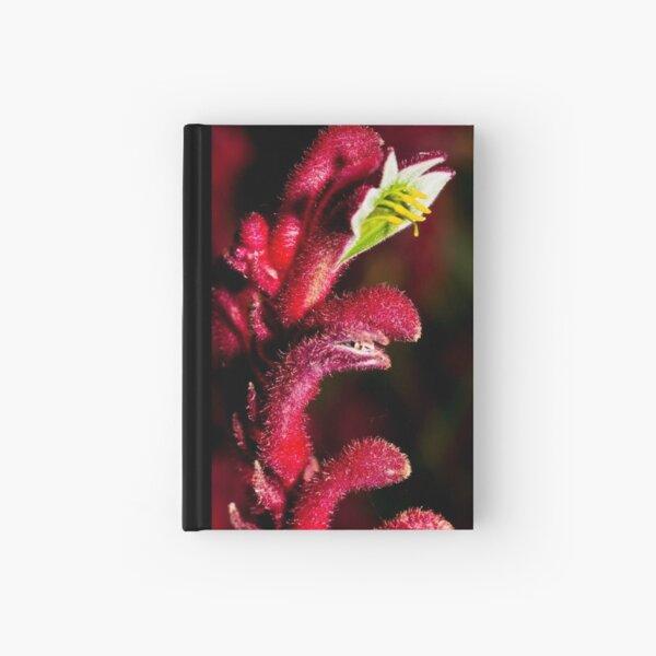 Kangaroo Paw Hardcover Journal