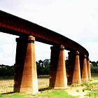 Murray Bridge Curved Railway  by cjcphotography