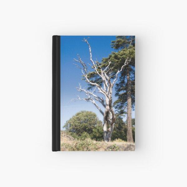 Treasured Tree  Hardcover Journal