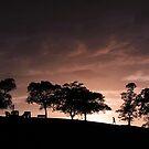 Sunrise by sienebrowne