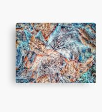 Winter Leaves pattern bywhacky Canvas Print