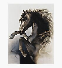 """""""Black Fury"""" Painting in Oils Photographic Print"""