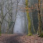 Walk in the mist by relayer51