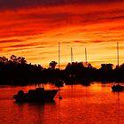 Blaze In the Harbor by Nancy Richard
