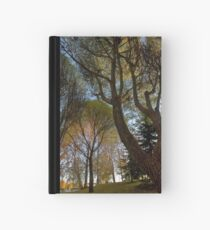 Seats under the big trees Hardcover Journal