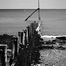 Coastal Groyne (Black and White)  by shane22