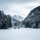 Mountains and frozen lake Zgornje Jezersko by Patrik Lovrin