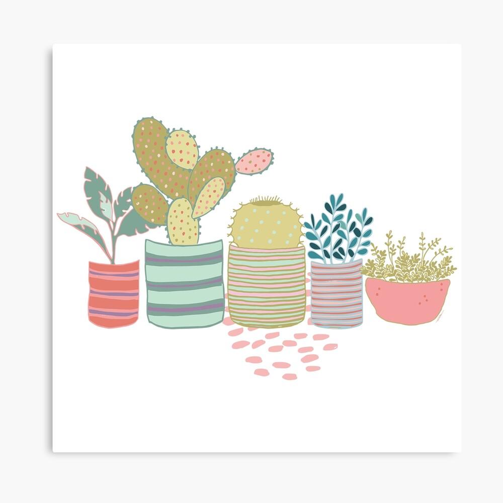 Cactus Toss Canvas Print