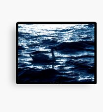 Midnight Elegance Canvas Print