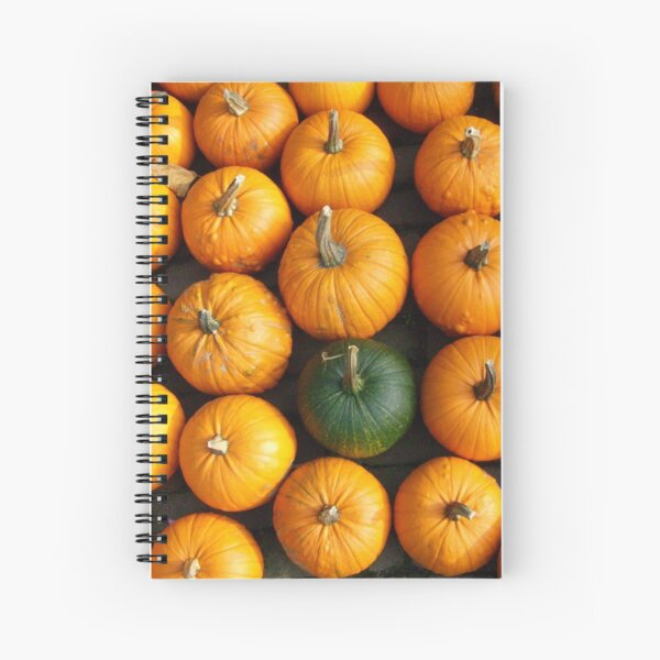 Odd One Out  Spiral Notebook