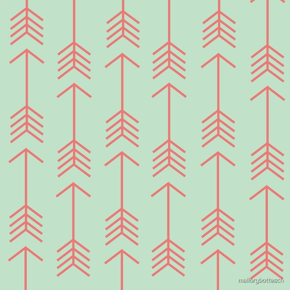Mint & Coral Shooting Arrows by mallorybottesch