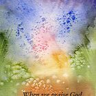 The Fireworks of Praise by Diane Hall