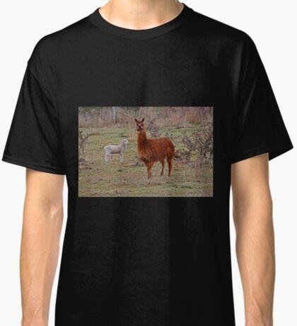 Alpaka und Freund Classic T-Shirt