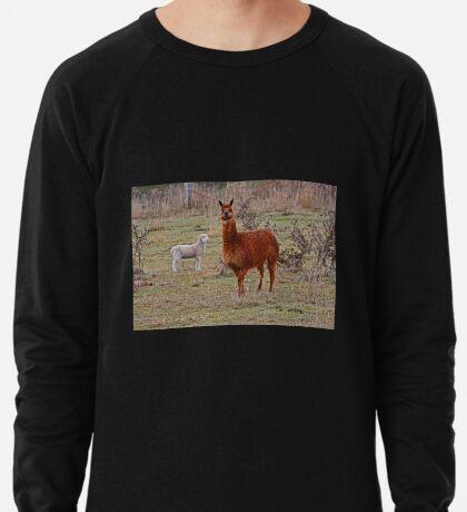 Alpaka und Freund Leichtes Sweatshirt