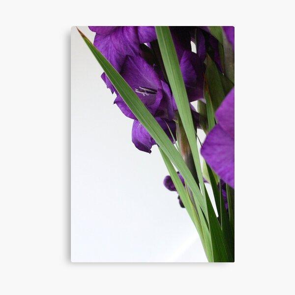 Modern Flowers Canvas Print