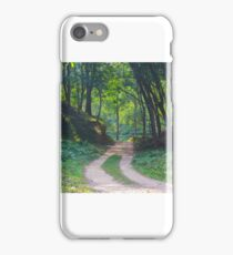 A road of Green path iPhone Case/Skin