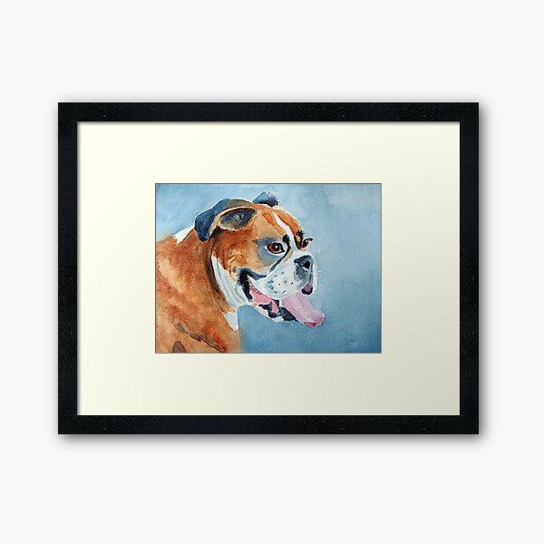 Beautiful boxer Framed Art Print