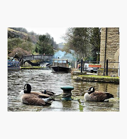 Rochdale canal  Photographic Print
