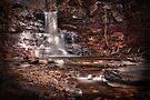 Sheldon Reynolds Falls by Aaron Campbell