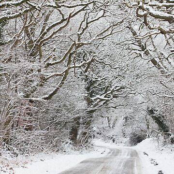 The Road to Winter Wonderland by chuckirina