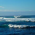 Ho Okipa Beach Park Waves  by Robert Meyers-Lussier