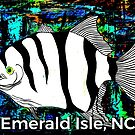 Emerald Isle NC Spadefish  by barryknauff