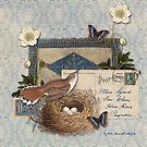 Nest by Jill Marcott McCall