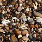Stones on the Beach by shane22