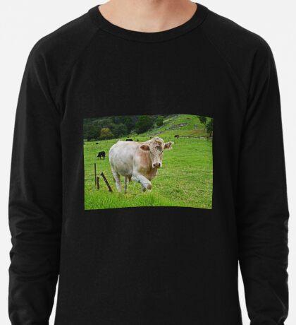 In dem Land Leichtes Sweatshirt