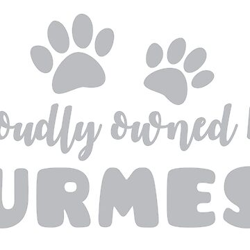 Proudly owned by a Burmese (with cute kitty cay mom paws) by jazzydevil
