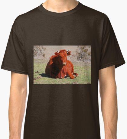 Sitzung! Classic T-Shirt
