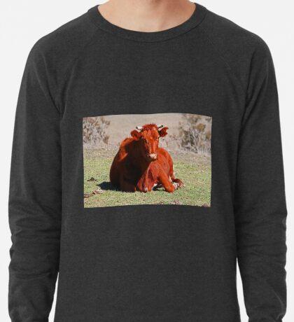 Sitzung! Leichtes Sweatshirt