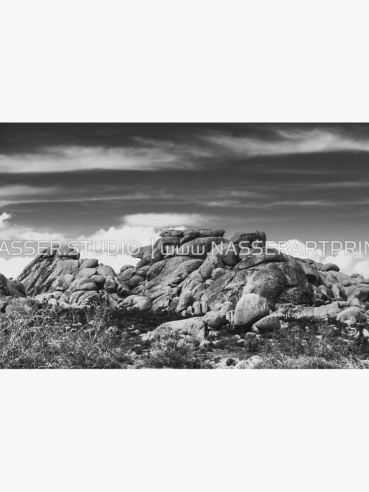 Big Rock Joshua Tree 7395 by neptuneimages