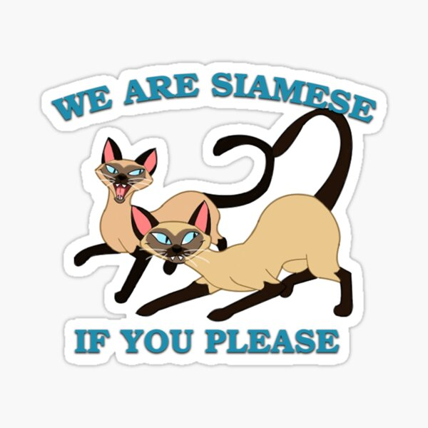 We are Siamese if you please Sticker