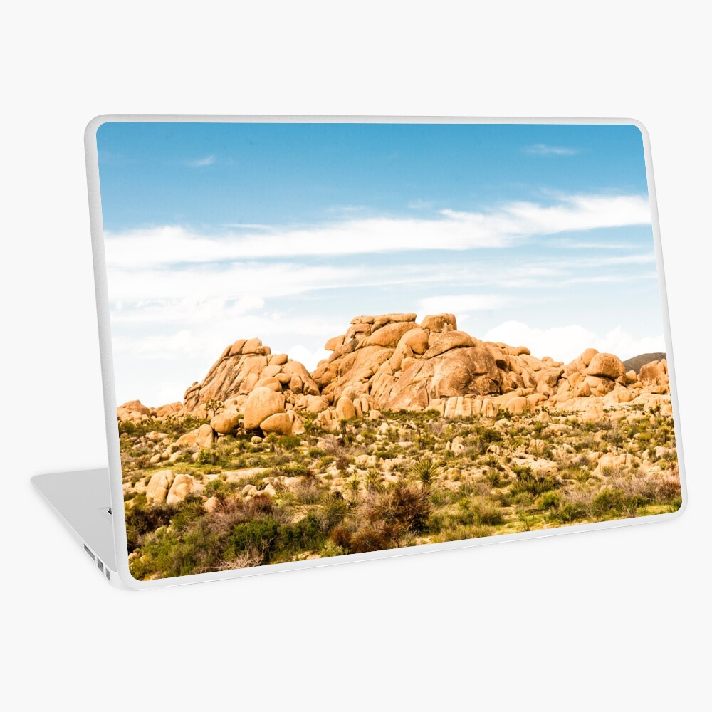 Big Rock Joshua Tree 7404 Laptop Skin