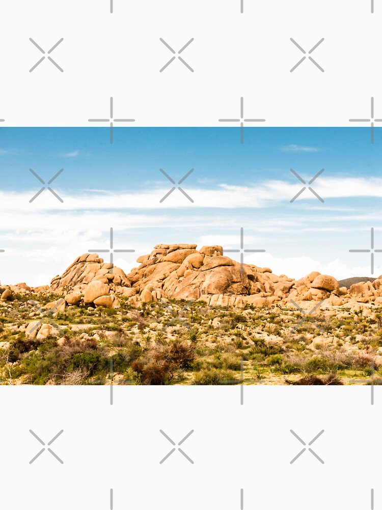 Big Rock Joshua Tree 7404 by neptuneimages