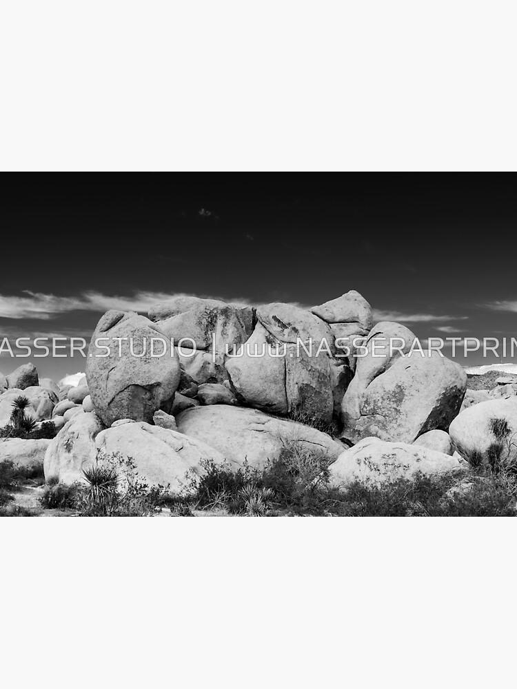 Big Rock Joshua Tree 7407 by neptuneimages